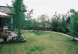 木々に囲まれた広々とした庭