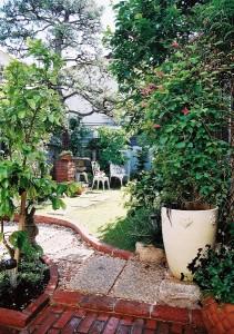 玄関から眺めたお庭。大きなマツ、雪見灯篭は以前のお庭のまま大切にしています