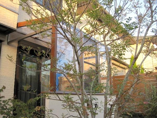 garden-imas02_large