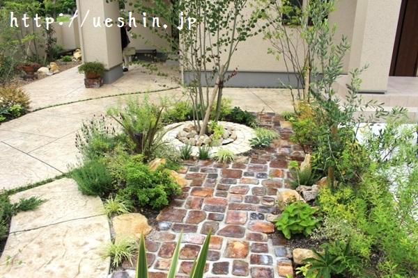 garden-sns034_large